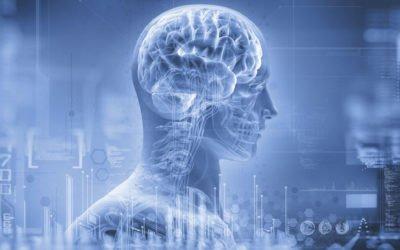 Conhecendo a mente humana para alcançar sucesso profissional
