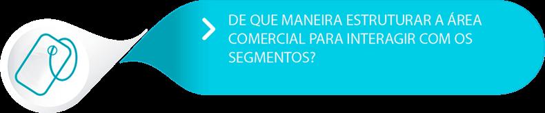 estruturar a área comercial para interagir com os segmentos